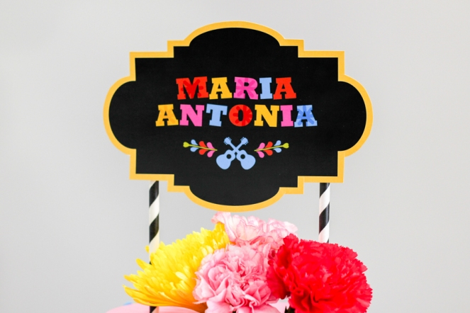 BAJA - 5. Cumpleaños Ma Antonia COCO-18